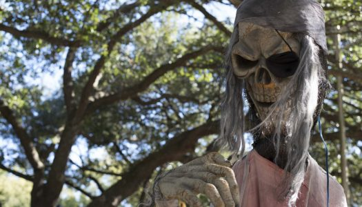 Say Hello to Shreveport's Spookiest Sanctuary