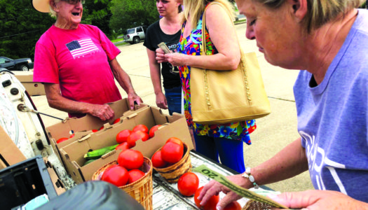 Going to Market: A Celebration of Local Produce