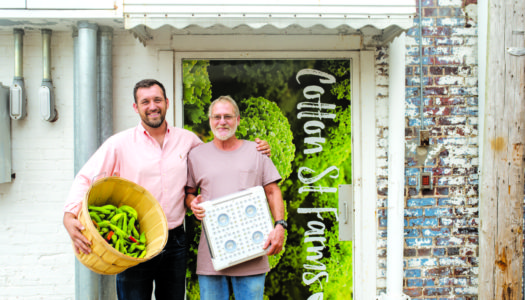 Local Brings New Spin to Farm-to-Table