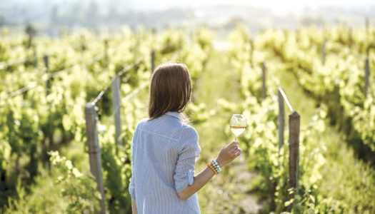 Sip On This: Sustainable Wines for Earth Day