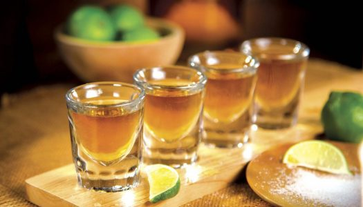 Sip on This: Understanding Tequila